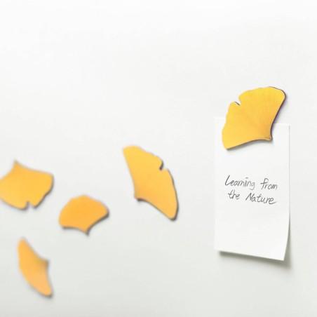 Leaf Magnet