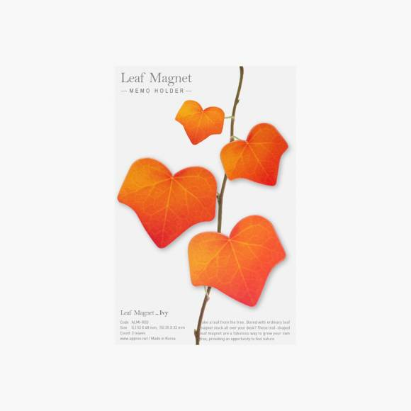 Leaf Magnet Lierre