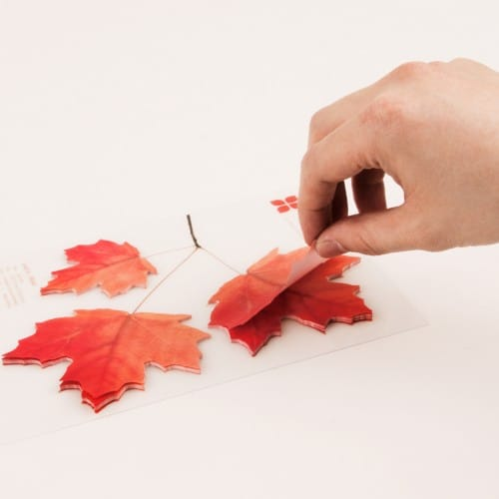 Sticky leaf